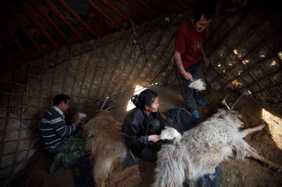entretien laine cachemire