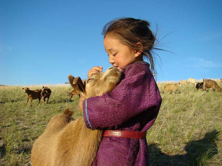 pashmina en cachemire de mongolie