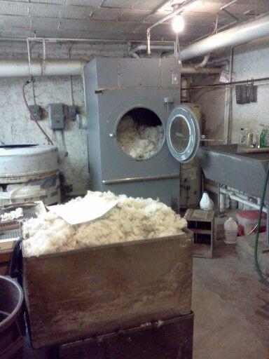 laver laine lambswool machine laver