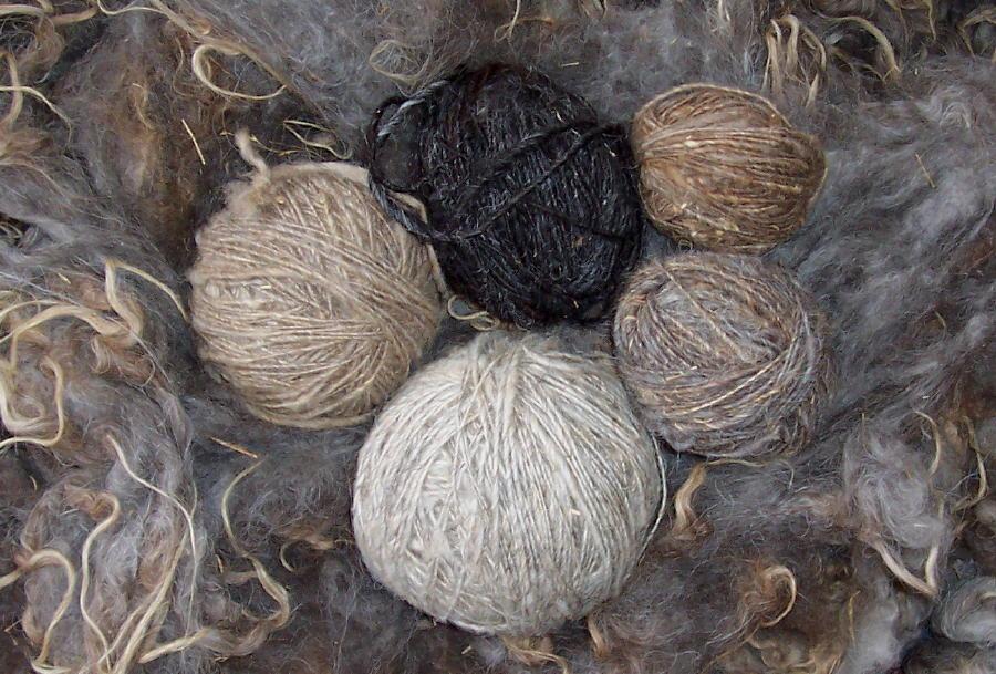 Proprietes caracteristique laine